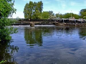 River Lea Hoddesdon